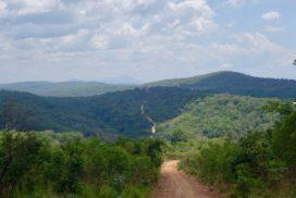 Western Tanzania woodlands