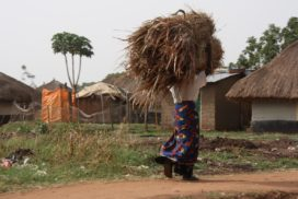 Lugbara women carrying grass